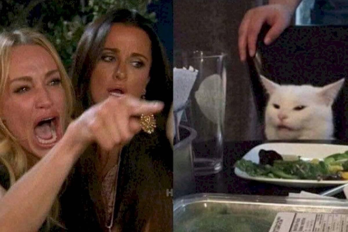 El Curioso Origen Del Meme Del Gato Blanco Y De La Mujer Que Le