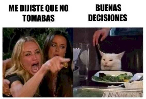 ¿Te gusta el meme del gato blanco y la mujer gritando? Esta es la historia detrás