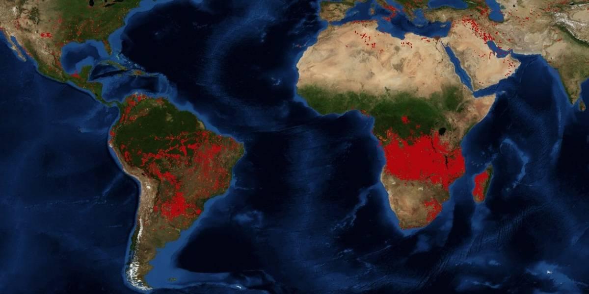 255 millones de toneladas de dióxido de carbono a la atmósfera: incendios desde el Ártico a la Amazonía están llevando al cambio climático a un punto de no retorno