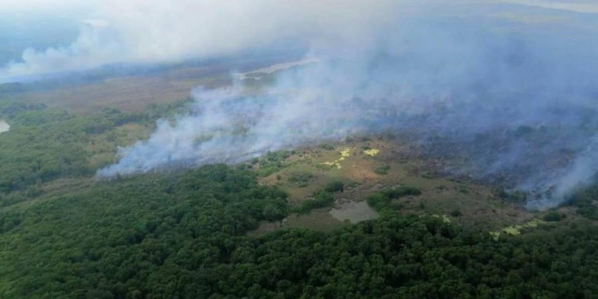 El incendio forestal que aqueja a un parque en Colombia