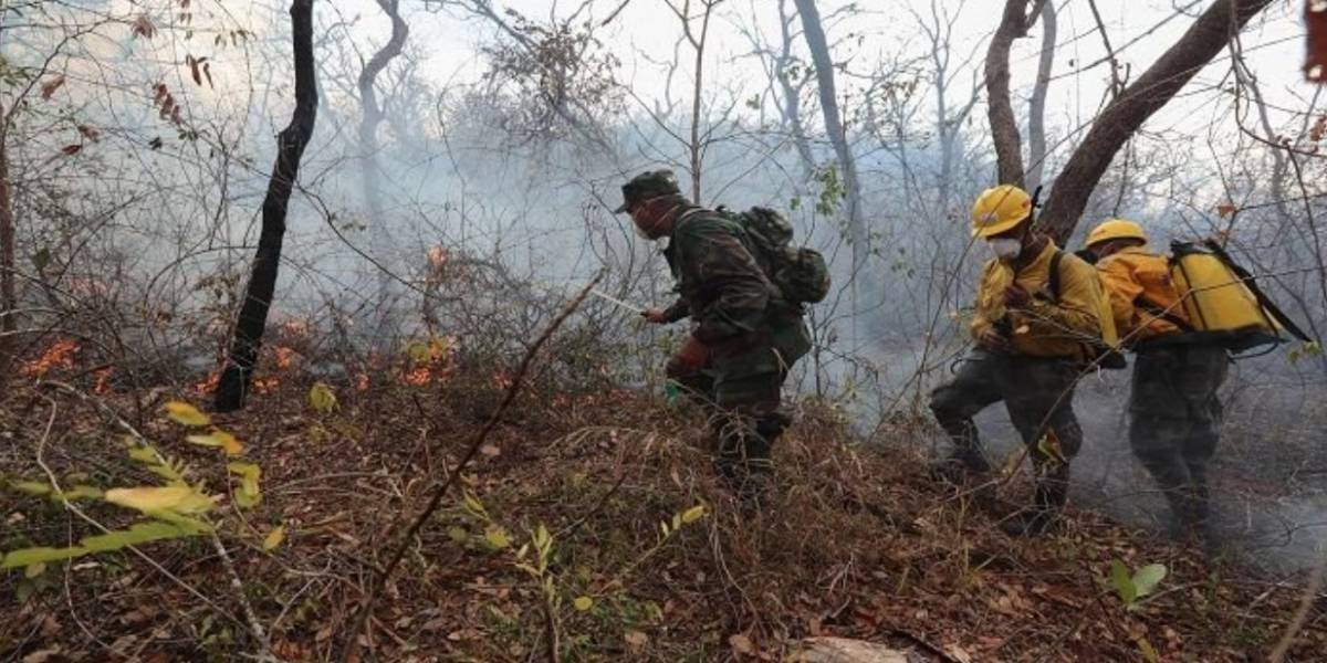 Bolivia registra dos fallecidos que intentaban sofocar incendios
