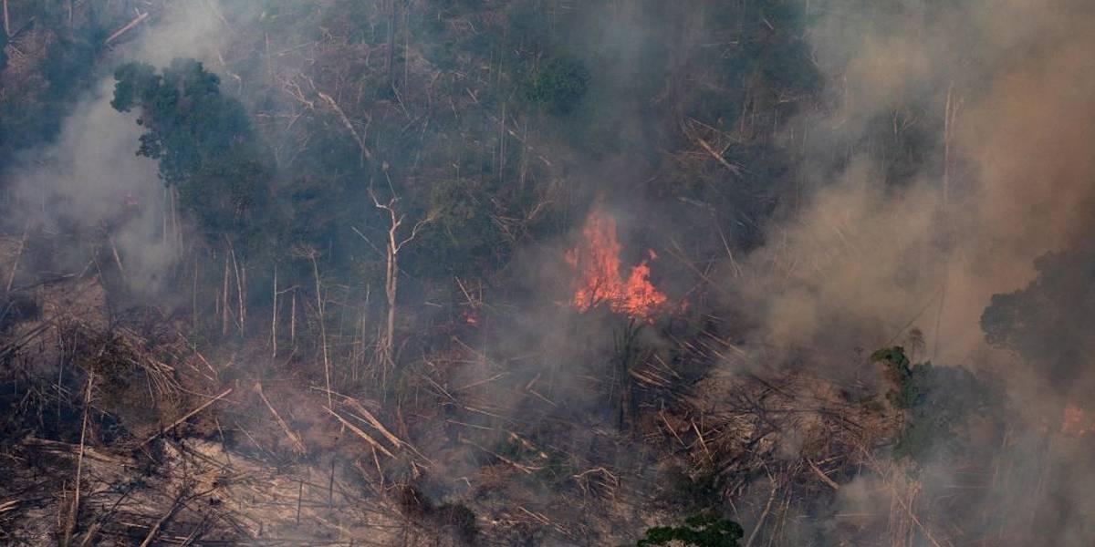 Decreto proíbe queima controlada na Amazônia e no Pantanal por 120 dias
