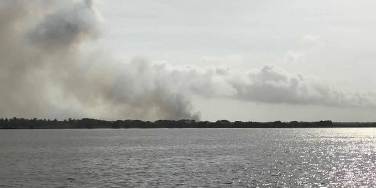 No solo se quema el Amazonas: También se quema el Parque Isla de Salamanca