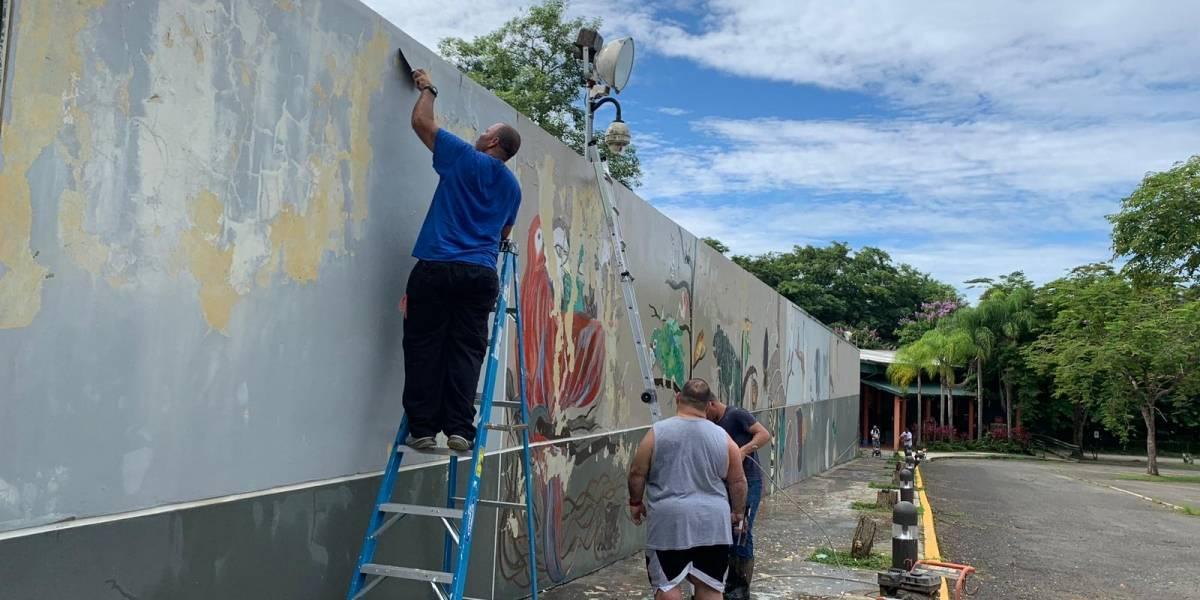 Embellecen el zoológico de Mayagüez
