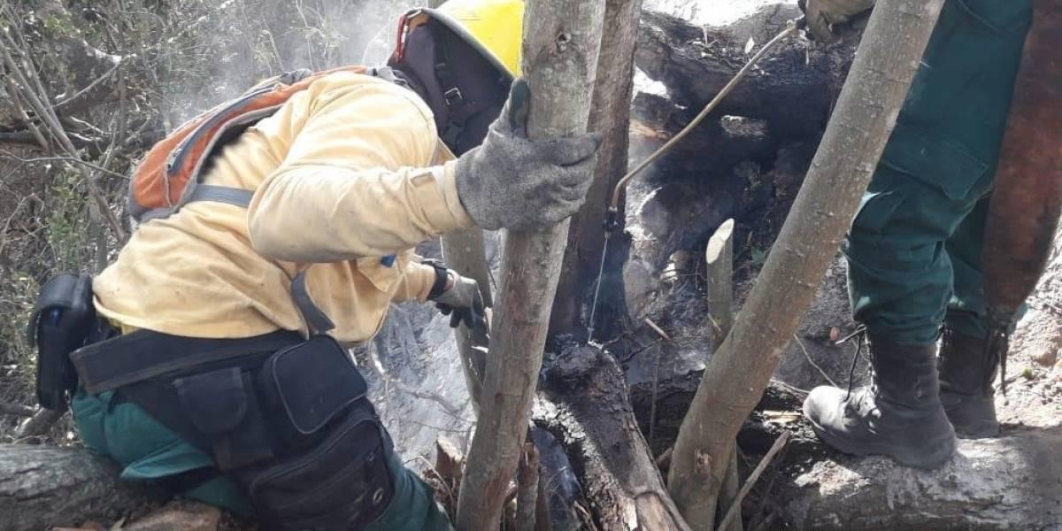 Alerta por incremento de incendios forestales en municipios de Cundinamarca