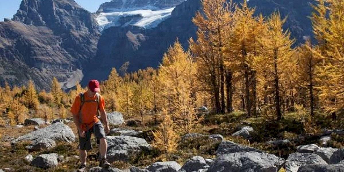 Travel Alberta realiza Misión Comercial en México