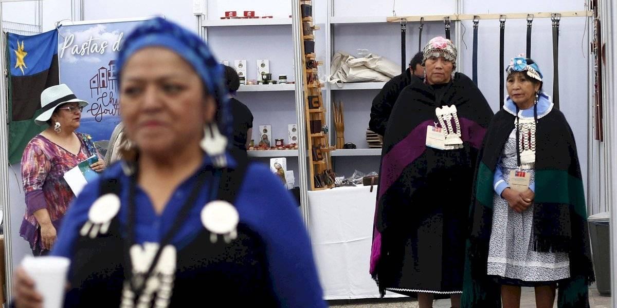 Día Internacional de la Mujer Indígena: estudio revela que son el segmento más discriminado de la población chilena