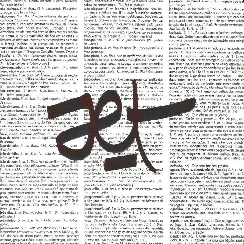dicionário capão