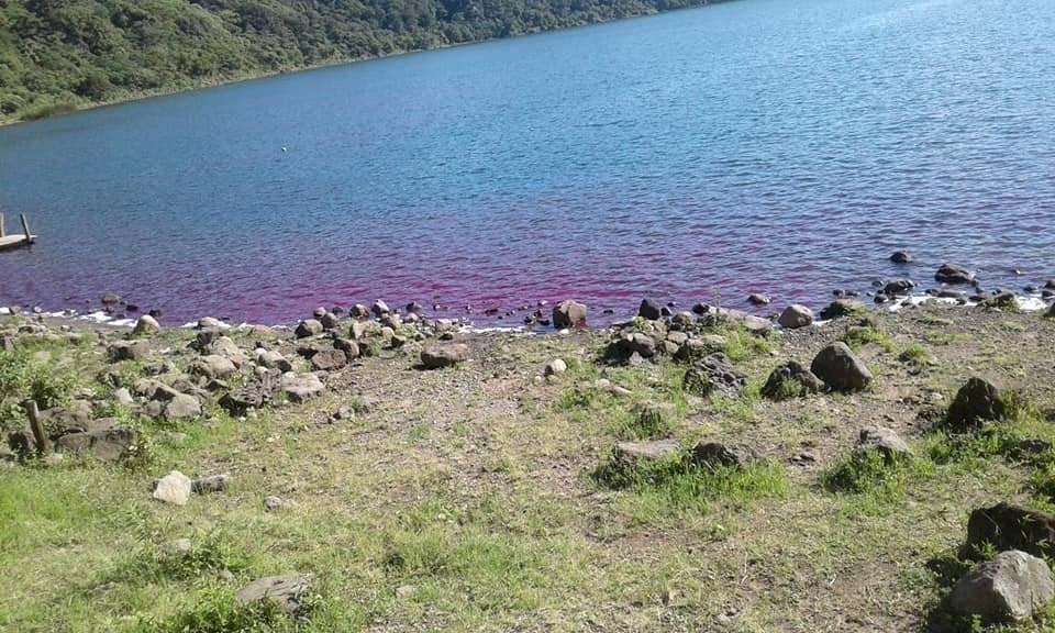 Laguna de Ipala se tiñe de rosado