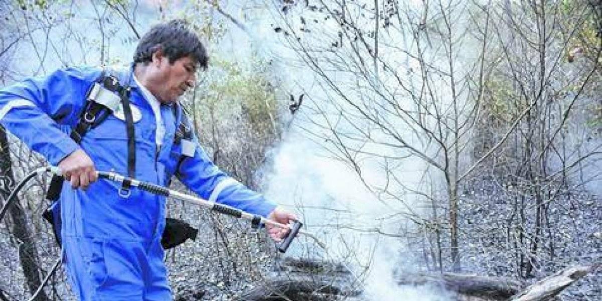 Los incendios en la Amazonía le pasaron la cuenta a Evo Morales