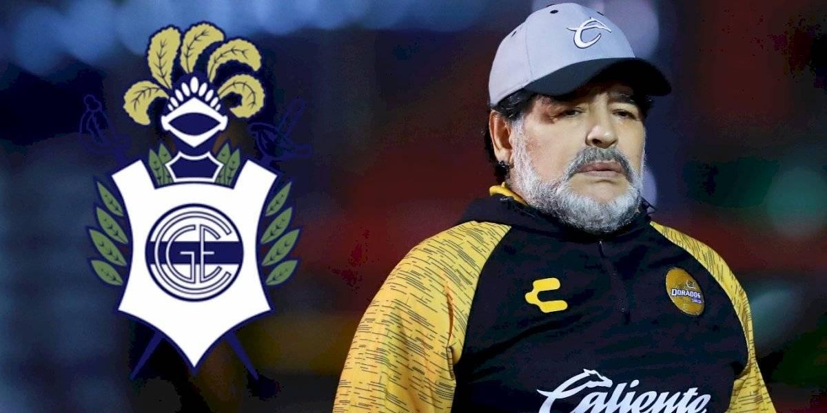 OFICIAL: Maradona es nuevo técnico de Gimnasia La Plata
