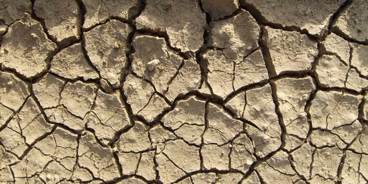 ONG anuncia que en 20 años más Chile vivirá una sequía tan severa como en África