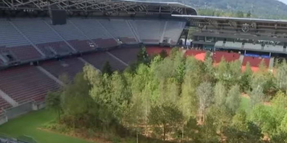 VIDEO. Convierten en bosque un estadio de futbol