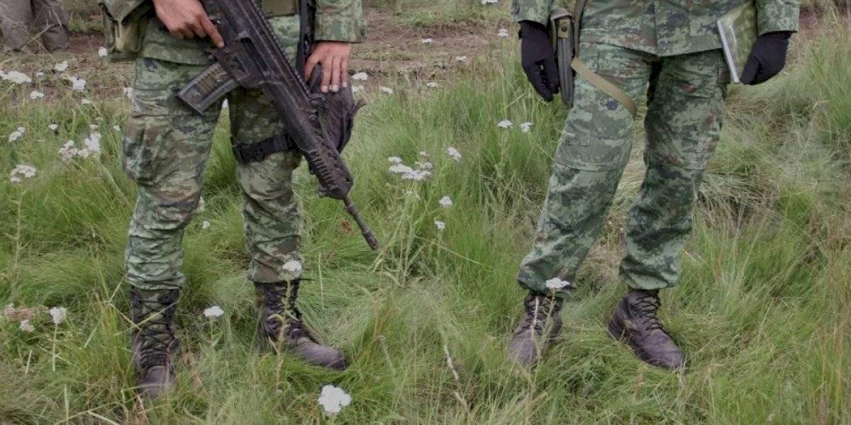 Guardia Nacional ayudará en recuperación de bosques en Milpa Alta