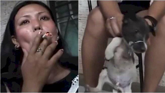 Buscan a mujer que apagó un cigarrillo en los ojos de un cachorro