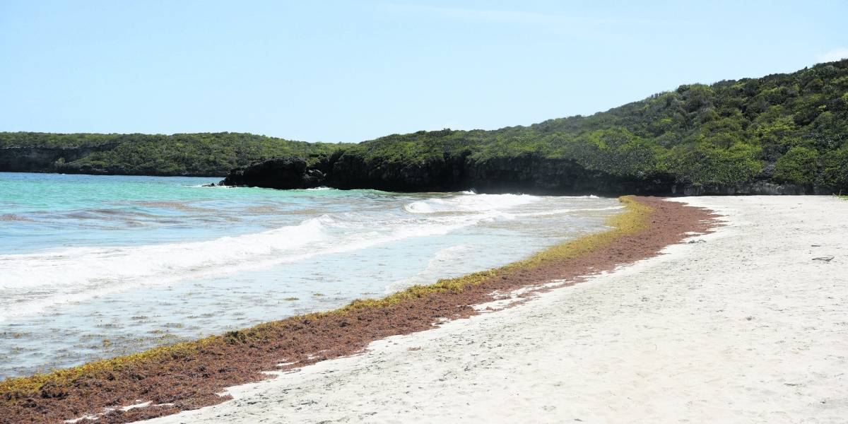 Todo un secreto la posible apertura de las playas