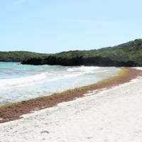 DRNA estará velando a turistas que no cumplen con la Orden Ejecutiva en Vieques