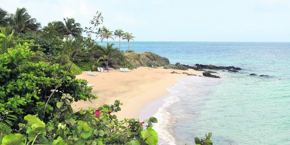 Vieques y Culebra recibirán embarcaciones chárteres