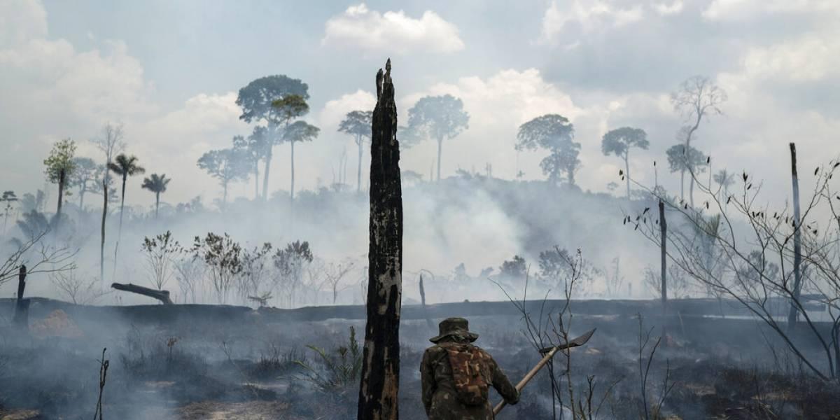 Registran aumento en contaminación por incendios en Amazonas