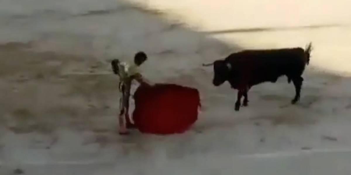 ¡Imágenes fuertes! Famoso torero sufre una grave cornada en España