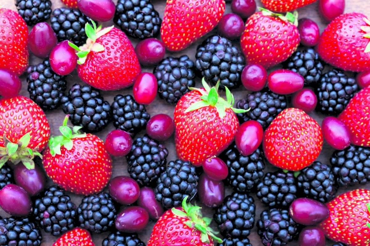 Superalimentos, frutos rojos