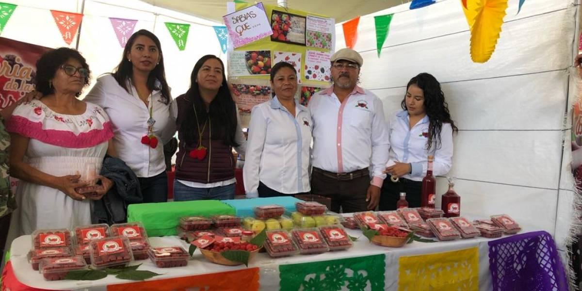 Supera expectativas Feria de las berries