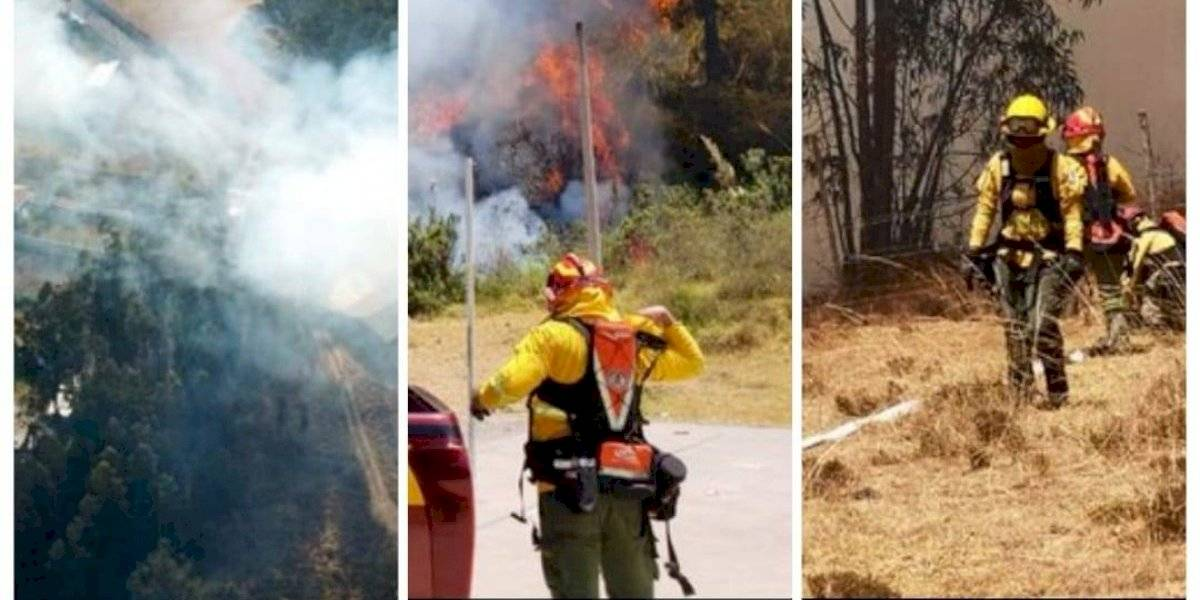 Quito: Tres incendios forestales se reportaron este 10 se septiembre