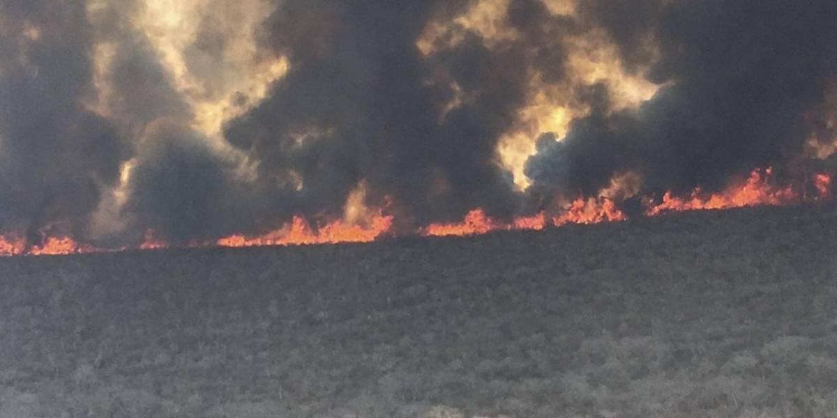 Incendios incontrolables en Bolivia ya afectan a pequeños poblados