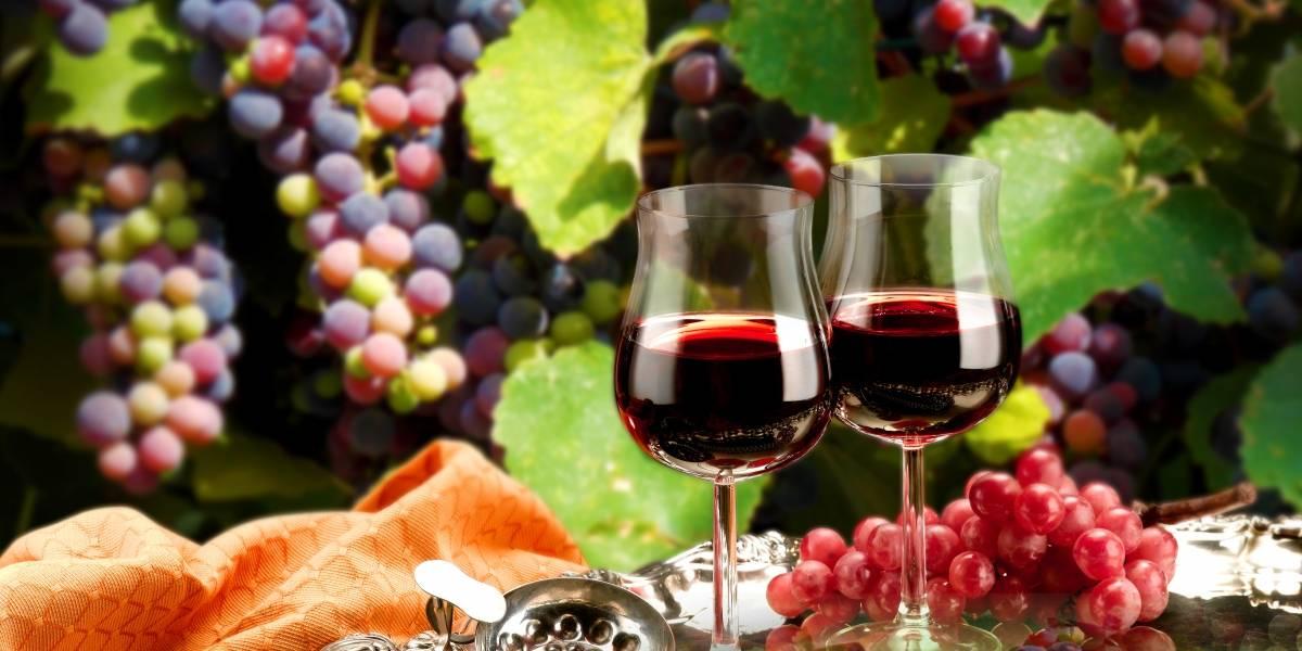¿Estás listo para el Vino Fest 2019 en Aguascalientes?