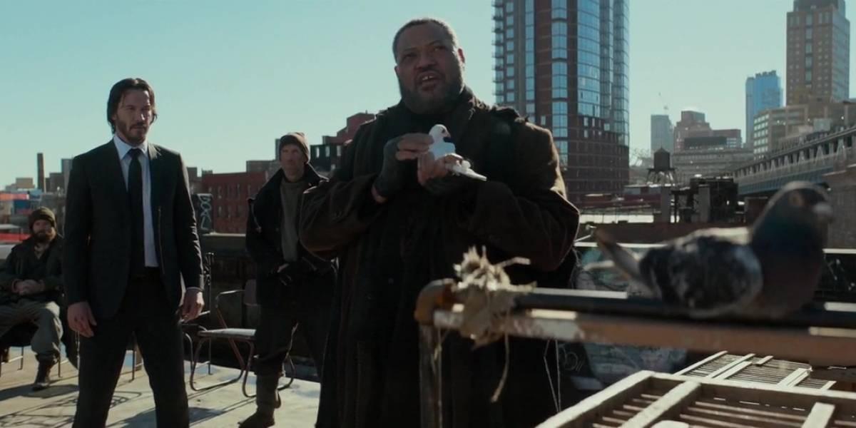 Diretor de 'John Wick' quer mais atores de 'Matrix' na franquia