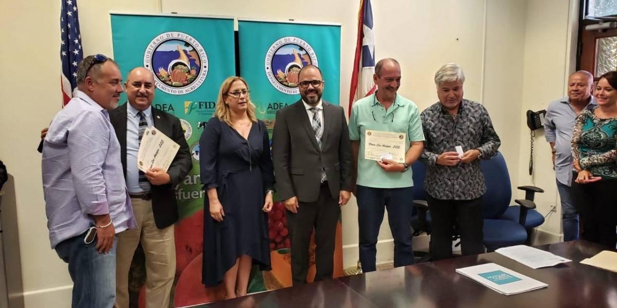 Entregan las primeras licencias para cultivo y manufactura de cáñamo