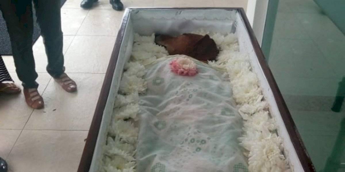 """""""Los animales merecen respeto y dignidad"""": veló a su perro en un ataúd y desató fuerte polémica en las redes sociales"""