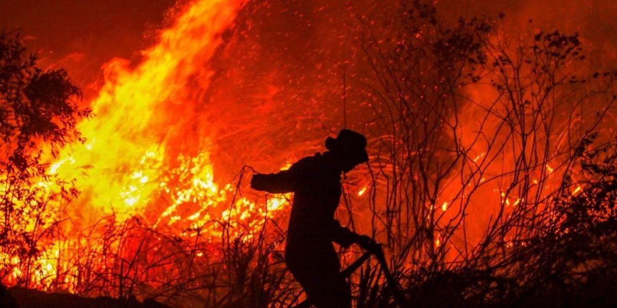 Incendios en Indonesia acentúan temores sobre el calentamiento global