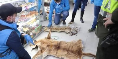 Animales sacrificados en Bogotá