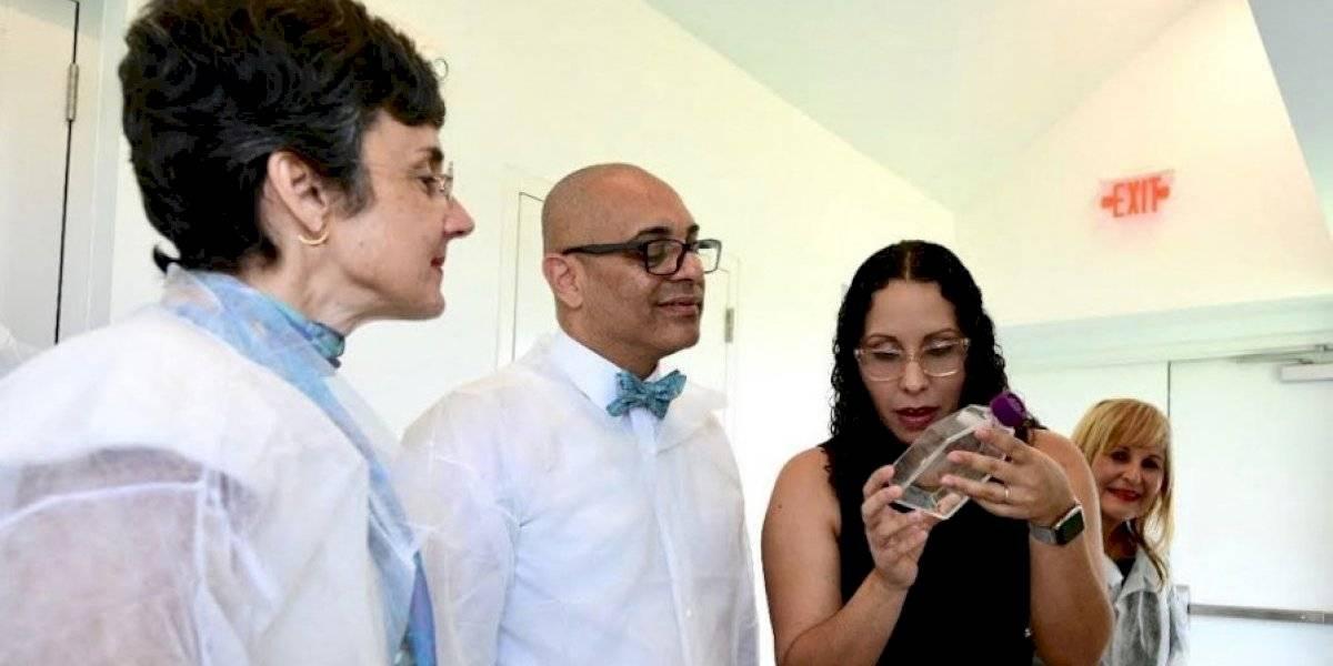 Ofrecerán talleres a maestros para combatir mosquito Aedes aegypti