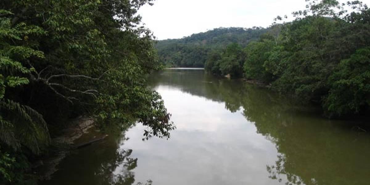 Varios ríos tropicales en el mundo están fuertemente afectados por el ser humano