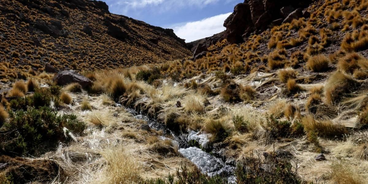 """A pesar de todavía no haber fecha para los alegatos orales: Bolivia asegura tener una """"posición sólida"""" frente a demanda por el río Silala"""