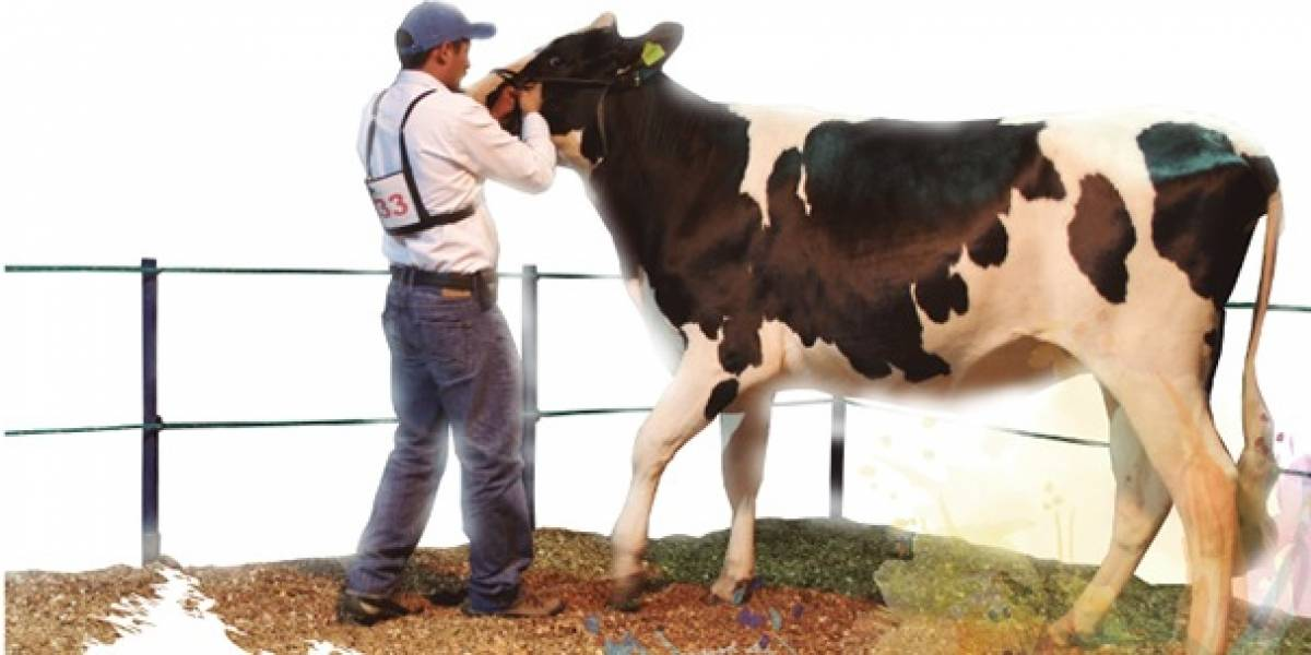 Llega la 'Feria Holstein 2019' cargada de sorpresas