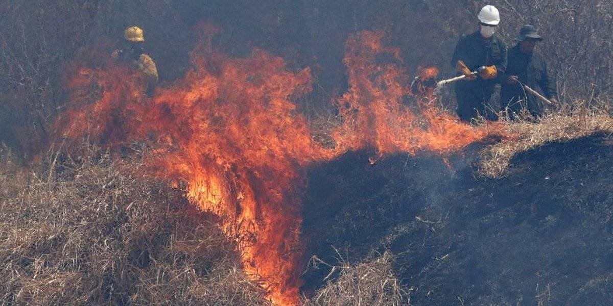 Incendios en Bolivia queman más de tres millones de hectáreas