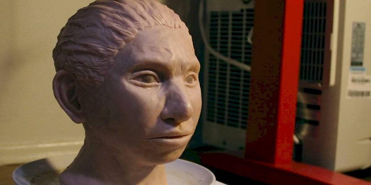Recrean cráneo de homínido a partir de análisis de ADN