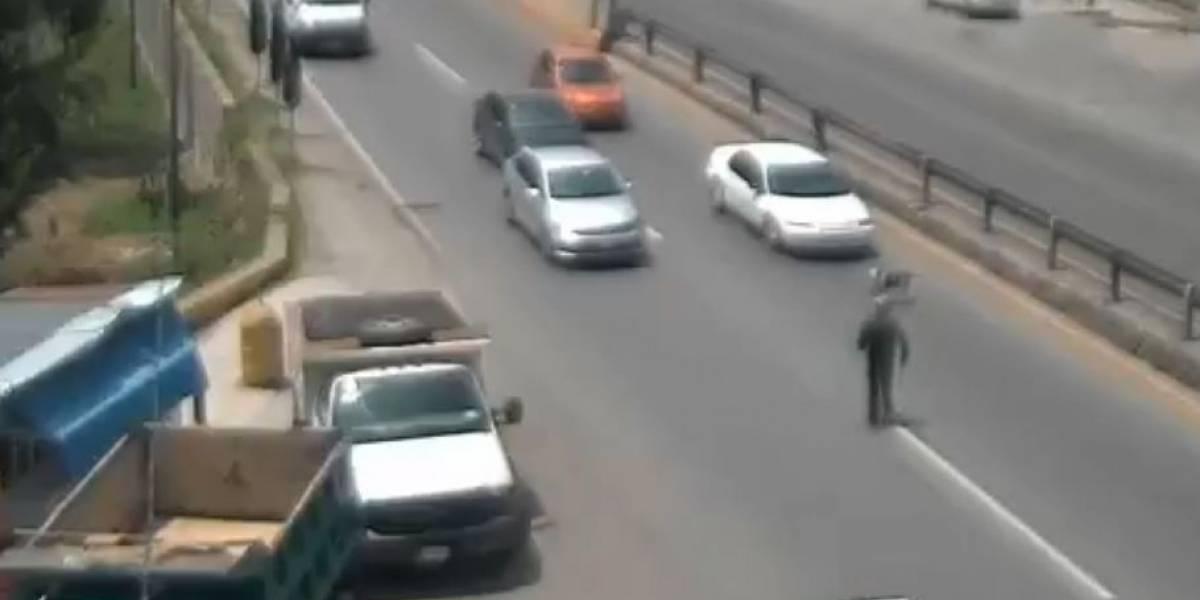VIDEO. Tráiler impacta contra fila de vehículos mientras un conductor rescataba a un perro