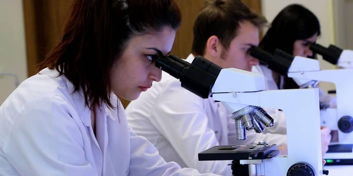 La investigación como campo de acción de la Medicina en Colombia