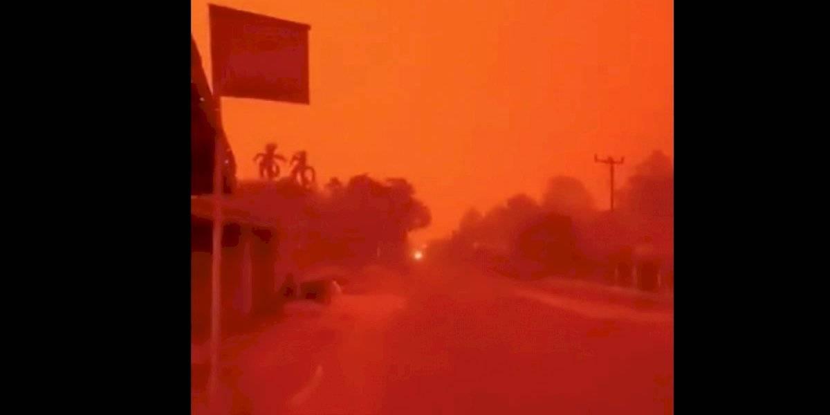 El infierno en la tierra: el día que el cielo se tiñó de rojo en medio de la catástrofe ambiental que vive Indonesia por los incendios