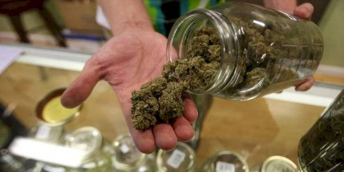 Ejemplar el servicio al cliente en Canadá: retiran de la venta marihuana porque no era demasiado potente