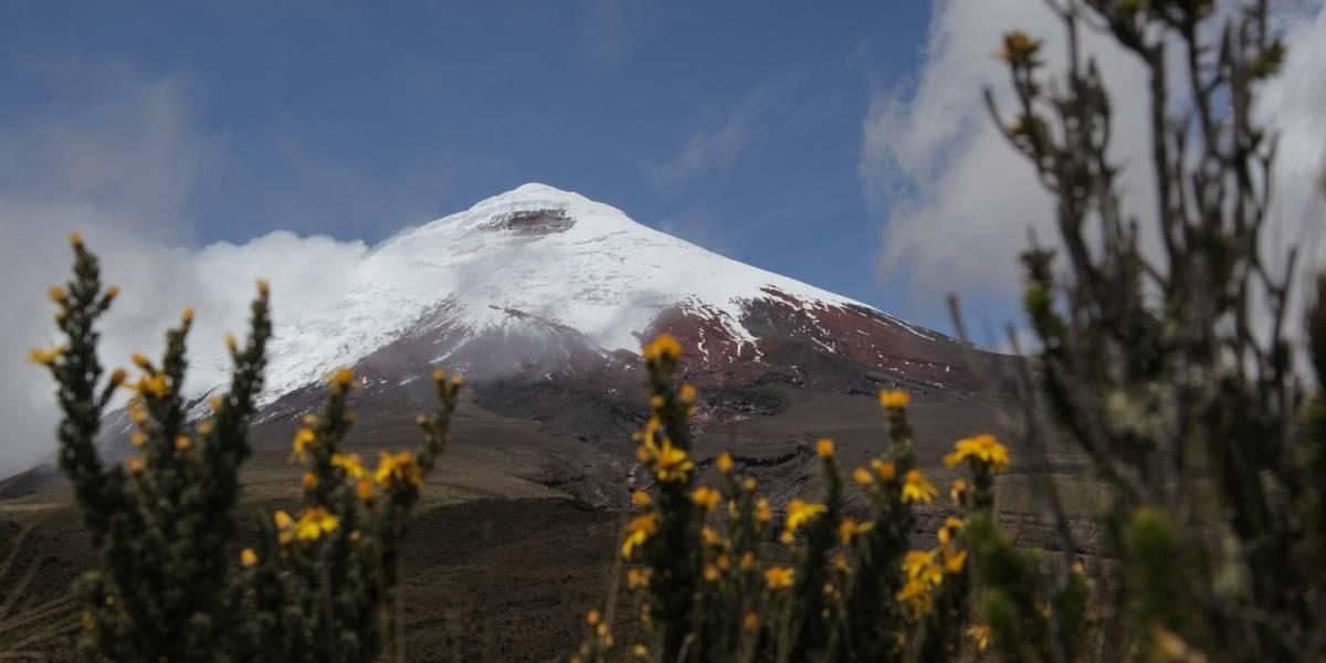 Se anuncia la reapertura del Parque Nacional Cotopaxi