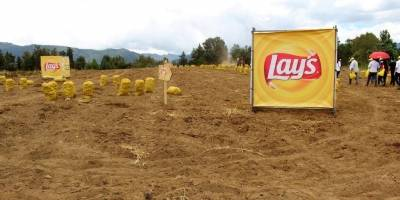 Papas Lay's Guatemala