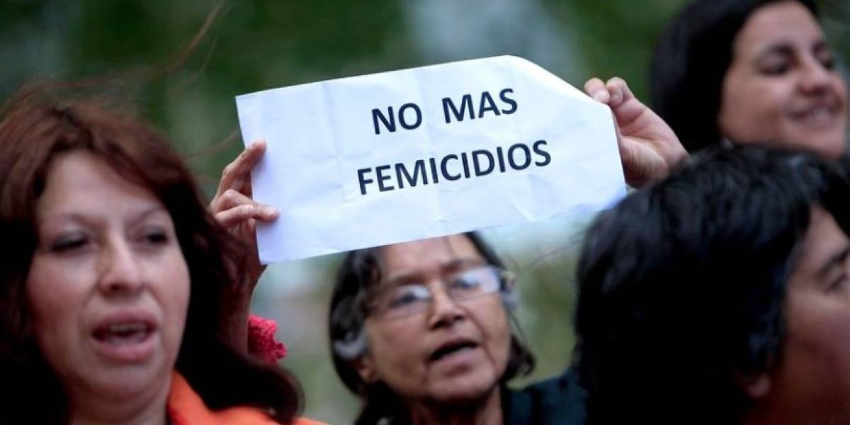 Estudio describió el perfil de los femicidios en Chile