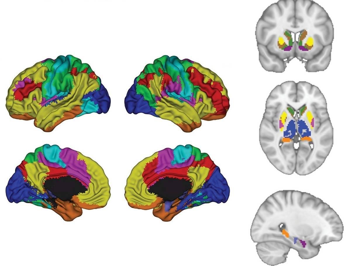 Cómo la inteligencia artificial ayuda a combatir la depresión