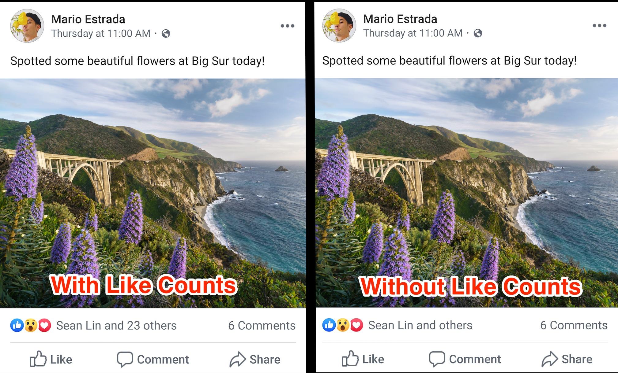 Comenzó Facebook a ocultar 'likes' de algunos para evitar