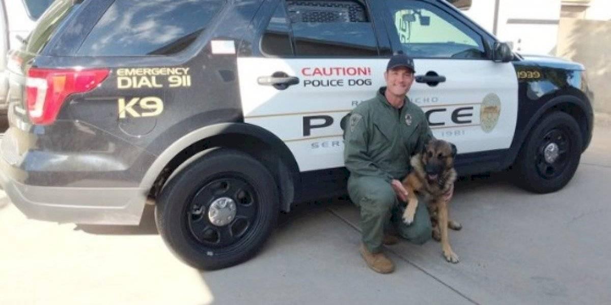 """Agredió a una mujer, se encerró en su casa y luego mordió a un perro policía mientras se """"enfrentaba"""" a varios uniformados"""